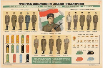0710. Военный ретро плакат: Форма одежды и знаки различия военнослужащих вооруженных сил Венгерской Народной Армии