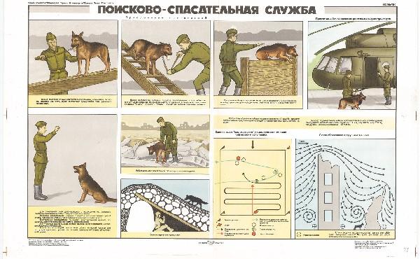 0862. Военный ретро плакат: Поисково-спасательная служба (собаки)