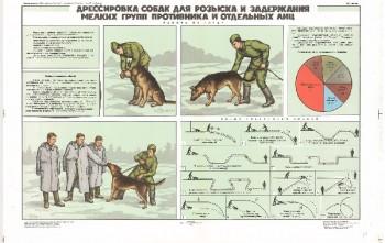 0863. Военный ретро плакат: Дрессировка собак для розыска и задержания мелких групп противника и отдельных лиц