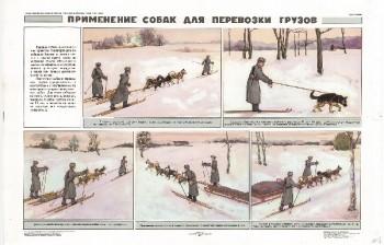 0867. Военный ретро плакат: Применение собак для перевозки грузов