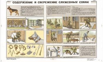 0868. Военный ретро плакат: Содержание и сбережение служебных собак