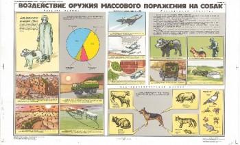 0872. Военный ретро плакат: Воздействие оружия массового поражения на собак
