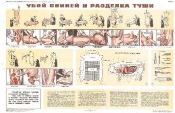 1552. Советский плакат: Убой свиней и разделка туши