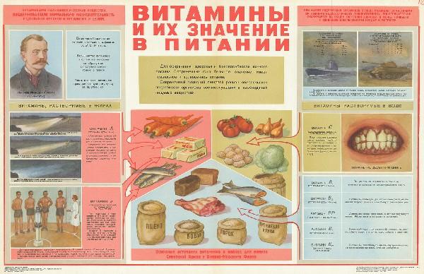 1564. Советский плакат: Витамины и их значение в питании