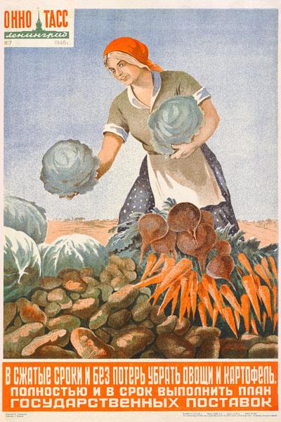 600. Советский плакат: В сжатые сроки и без потерь убрать овощи и картофель