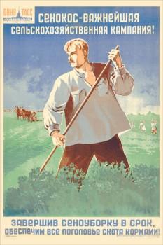 633. Советский плакат: Сенокос - важнейшая сельскохозяйственная компания!