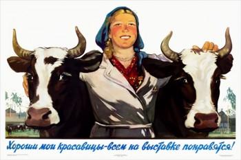747. Советский плакат: Хороши мои красавицы - всем на выставке понравятся!
