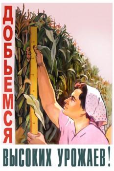 1072. Советский плакат: Добьемся высоких урожаев!