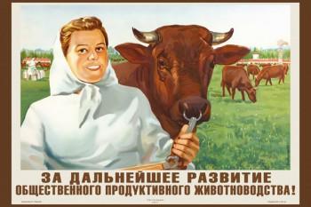 1219. Советский плакат: За дальнейшее развитие общественного продуктивного животноводства!