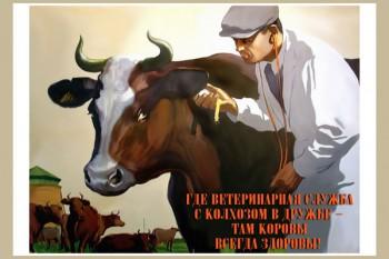 1221. Советский плакат: Где ветеринарная служба с колхозом в дружбе - там коровы всегда здоровы!