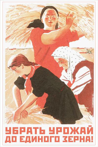 1464. Советский плакат: Убрать урожай до единого зерна!