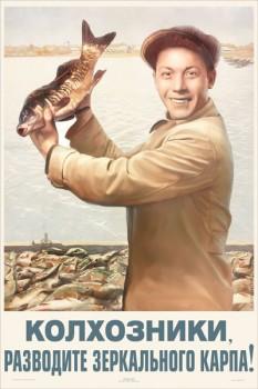 1505. Советский плакат: Колхозники, разводите зеркального карпа!