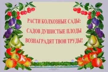 769. Советский плакат: Расти колхозные сады: садов душистые плоды вознаградят твои труды!