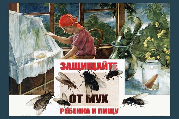 785. Советский плакат: Защищайте от мух ребенка и пищу