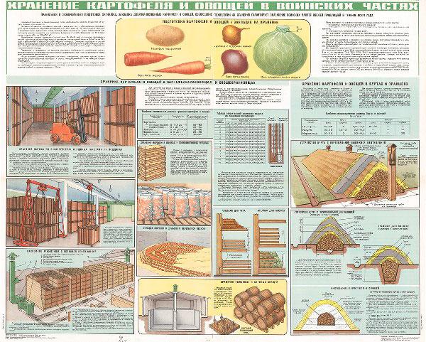 1282. Военный ретро плакат: Хранение картофеля и овощей в воинских частях